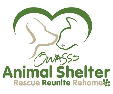 animal shelter_Final_small