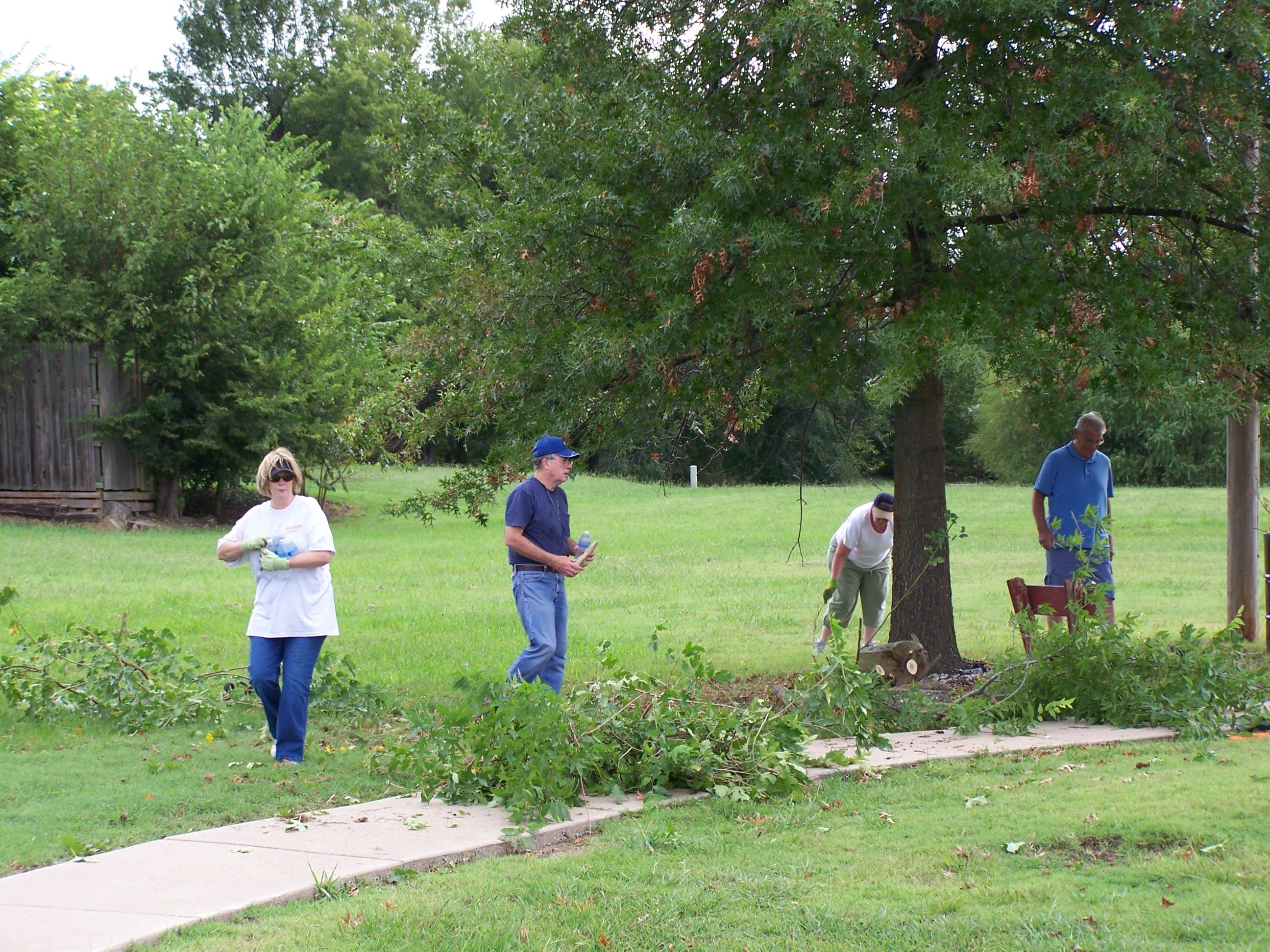 Volunteers trim trees around pond