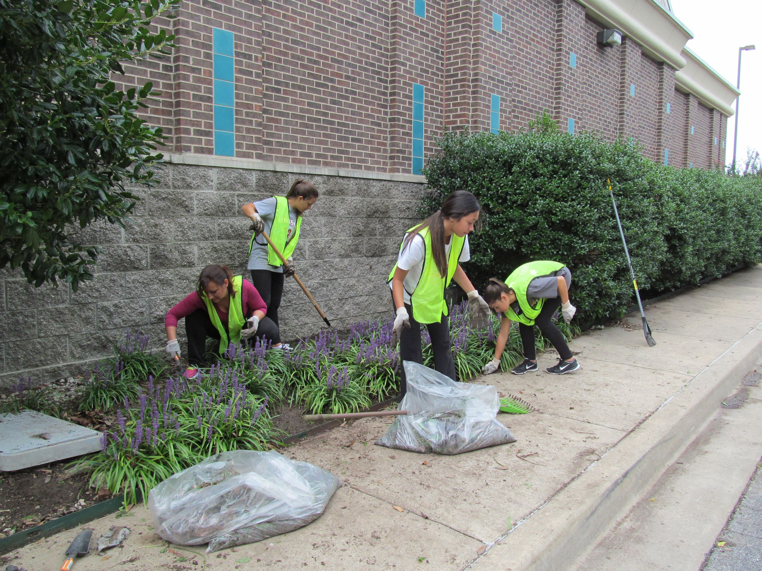 Volunteers cleaning out flowerbed at City Hall