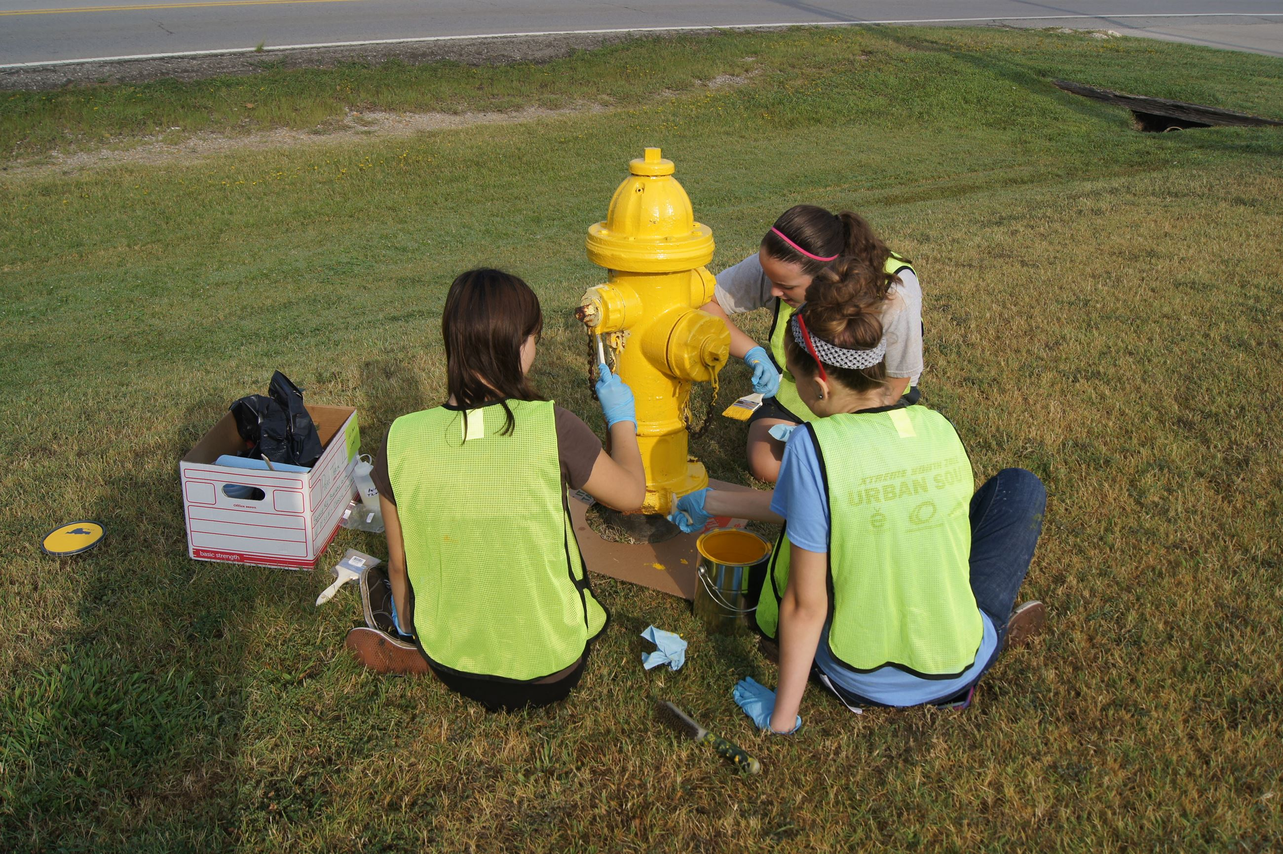 Volunteers painting fire hydrant